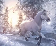 Wow Star Stable Horses, Horse Star, All The Pretty Horses, Beautiful Horses, Spirit The Horse, Arte Equina, Fjord Horse, Bryer Horses, Horse Games