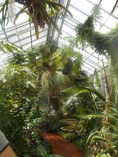 Jardin botanique de Porrentruy