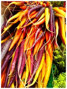 These carrots are so beautiful, and they're so delicious ... it's a crime that grocery stores only carry the mass-produced orange ones. Boring!