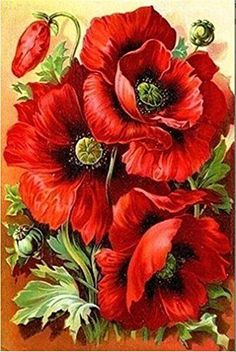 Diamond Painting full square drill Home decoration Cross Stitch Mosaic Embroidery needlework about red beautiful flowers Draw _ {categoryName} - AliExpress Mobile Mosaic Pictures, Pictures To Paint, Wall Pictures, Painting Pictures, Painting Videos, Flower Pictures, Oil Painting On Canvas, Diy Painting, Painting Flowers