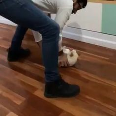 funny cats videos - Pets and Other Animals - Funny Animal Videos, Cute Funny Animals, Funny Animal Pictures, Cute Baby Animals, Funny Cute, Cute Cats, Super Funny, Videos Funny, Cat Fun