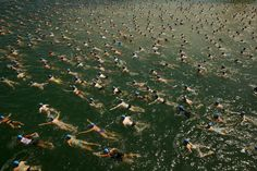 People swim during the annual public Lake Zurich crossing swimming event in Zurich on July 1, 2015.