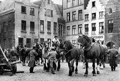 Brabo archief (oude foto's Antwerpen)