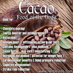 Uses And Benefits Of Cacao <3 ►► http://www.herbs-info.com/cacao.html?i=p