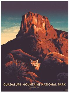 Guadalupe Mountains National Park Poster by Matt Taylor
