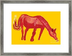 Red Horse Framed Print by Colleen Proppe White Bison, Hope Symbol, Red Art, Native American History, Frame Shop, Hanging Wire, Valentine Gifts, Fine Art America, Moose Art