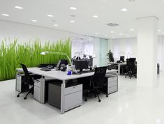 Green grassy wall murals and stickers for #office