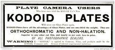 Original - Anzeige / Advertise 1903 : (ENGLISH) KODAK KODOID PLATES - 120 x 50 mm