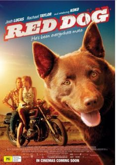 Great family movie! True story and new place to add to my bucket list!