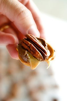 Rolo Pretzel Turtles - what a great, easy, inexpensive gift idea that looks like you put a lot of effort into it!
