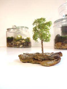 As Summer Fades....One Miniature Tree Terrarium Accessory Tiny Fall Tree Terrarium Accessory Terrarium Tree Miniature Garden Tree