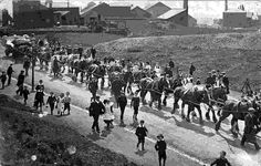 Titanic Fact #16: The Titanic's main anchor was so heavy it required a team of 20 horses to transport it to the ship yard.
