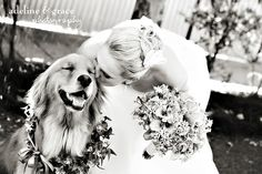 Una imagen vale más que mil palabras, esto explica porque tu perro debe estar en tu boda ⋮ Es la moda