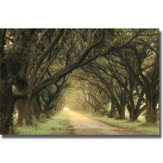 <li>Artist: William Guion</li><li>Title: Evergreen Alley</li><li>Product type: Canvas art</li>