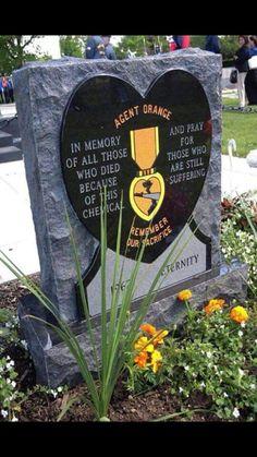 Agent Orange Every one of us took home a poison! Vietnam History, Vietnam War Photos, Vietnam Vets, Brown Water Navy, Vietnam Veterans Memorial, Military Veterans, My War, All Family, Usmc