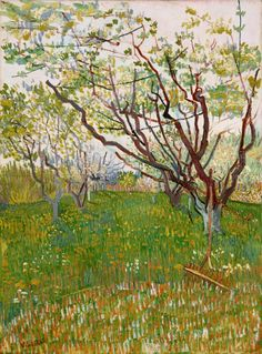 Flowering Garden - Vincent van Gogh