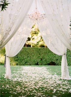 A simple yet stunning setting for your wedding. Make a chiffon creation to say your vows underneath!
