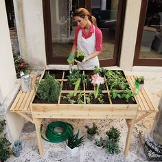 """Organic Garden Table. Keeps you off the ground and foils nibbling pests! 16"""" depth for deep root vegetables. Easy to assemble. $199.99"""