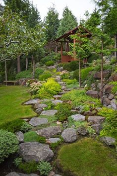 Gary Necci's love of hiking in the high alpine meadows at Mount Rainier inspired him to turn a mess of a steep backyard hillside into a tapestry of textural plantings in his West Seattle garden. #lowmaintenancelandscapebackyard