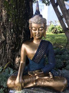 Estátua De Budas