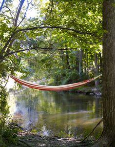 Yes. Hammock at the creek.