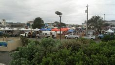 Chainsaws are buzzing at the Ocean Shores Sand and Sawdust Festival June 27-29, 2014