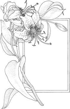 Lirio y tarjeta de felicitación Dibujo para colorear. Categorías: Lirios. Páginas para imprimir y colorear gratis de una gran variedad de temas, que puedes imprimir y colorear.