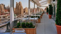 Rooftop gardens offer hotels a chance to save green by growing their own food and maximizing space.