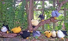 Birds knitted to the Sue Stratford Knits blackbird pattern by the Fairfax Court Yarnstormers Blackbird, Knits, Scene, Birds, Knitting, Plants, Pattern, How To Make, Tricot