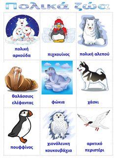 Preschool Education, Preschool Activities, Learn Greek, Polo Norte, Polar Animals, Autumn Crafts, Winter Activities, In Kindergarten, Early Childhood