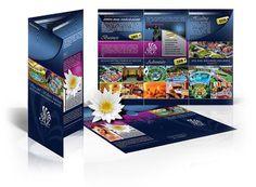 Brochures & Tri-Folds