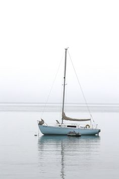 Hark, now hear the sailors cry / Smell the sea and feel the sky / Let your soul and spirit fly / into the mystic.