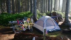 These 11 Rustic Spots In Oregon Are Extraordinary For Camping.....11. Cape Lookout State Park