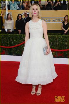 Sarah Paulson - SAG Awards 2014 Red Carpet