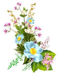 Botanical Flowers, Exotic Flowers, Beautiful Flowers, Arte Floral, Tulip Painting, Apple Prints, Jar Art, Diy Resin Crafts, Rose Pictures