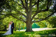 Kissing bride and groom under the shade of a large tree #Michiganwedding #Chicagowedding #MikeStaffProductions #wedding #reception #weddingphotography #weddingdj #weddingvideography #wedding #photos #wedding #pictures #ideas #planning #DJ #photography #bride #groom