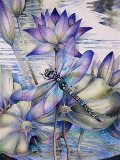 Dragonflies … how to paint them and what they mean! A new art class by Jody B … - Top 99 Pencil Drawings Silk Painting, Painting & Drawing, Dragonfly Art, Dragonfly Painting, Dragonfly Drawing, Inspiration Art, Oeuvre D'art, Art Techniques, Art Paintings