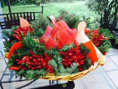 Chilies brings luck for Christmas and New Year