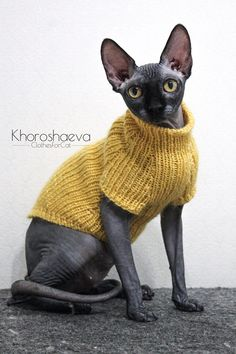 Sphynx Hand Knitted Cat Monochromatic Tank Top, Soft Tank Top For Cat Clothes, Knit Warm Cat Sweater For Gift Love Sphynx, Cat Clothing - Sphynx Cat Clothes, Pet Clothes, Cat Clothing, Knitted Cat, Cat Sweaters, Cat Costumes, Cat Supplies, Hand Knitting, Beginner Knitting