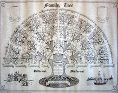 Résultats Google Recherche d'images correspondant à http://syverson.name/images/family-trees/Syverson-Family-Tree.jpg