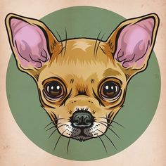 Ideas for tattoo dog cat deviantart Baby Chihuahua, Baby Dogs, Chihuahua Drawing, Chihuahua Tattoo, Animal Sketches, Animal Drawings, Desenho Tattoo, Dog Paintings, Dog Tattoos