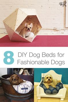Reclaim some space on your bed with one of these amazing DIY dog beds.