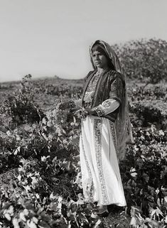 فتاة الفلاحين عقد حفنة من العنب. عين يبرود وفلسطين. 1937 سبتمبر ايلول.