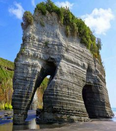 Elephant Rock, Three Sisters Beach North Island, New Zealand  Amazing Geologist