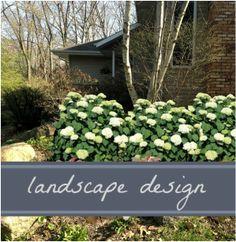 Garden, Shrubs, Plants, Herbs, Garden Center, Growing Flowers, Lawn, Landscape, Landscape Design