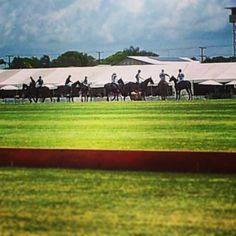 Australian Places and Events- Australian Open Polo Championships, Doomben, Brisbane QLD. With the glitz and glamour of Racing for spectators...