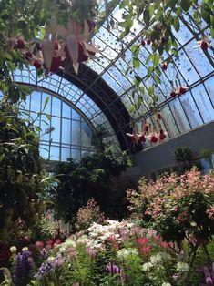pictures of small atrium gardens. inspirational 1000 ideas about atrium garden on atrium Atrium Garden, Conservatory Garden, Atrium House, Pergola, Hothouse, Ivy Plants, Greenhouse Gardening, Glass House, Garden Inspiration