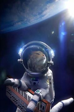 Cats on Synthesizers in space!
