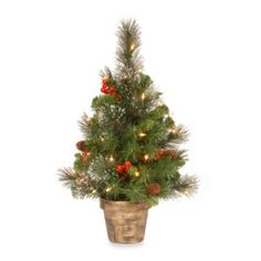 National Tree 2-Foot Crestwood Spruce Tree With White Lights - BedBathandBeyond.com