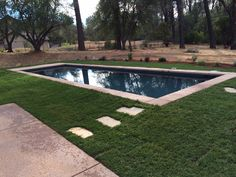 14x42 Ocean Blue Pebblesheen lap pool. No decking. Deckless.
